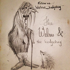 Walrus_hedgrhog